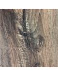 Cedarfields: Winter Oak